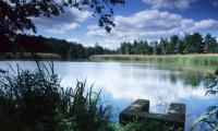 """Pond """"Großer Münsterteich"""" near Kreba (Photo: R. M. Schreyer)"""